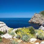 soggiorno-nella-riviera-del-corallo.2